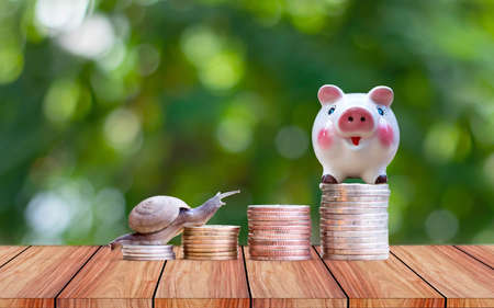 The snail and the piggy bank are on the pile of coins for financial growth ideas.