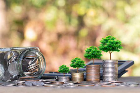 Plant trees on coins and calculators, financial accounting concepts and save money. 免版税图像
