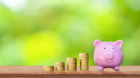 Coin and piggy bank for saving money on wooden table and blurred green nature background.
