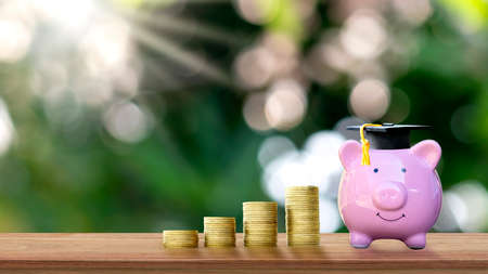 Coin and pig piggy bank with graduation hat on wooden table and blurred green nature background money saving concept.