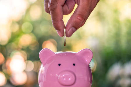 Saving, male hand put coins into pig piggy bank including blurred green background.