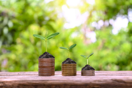 Show your financial development and business growth with trees that grow on coins.