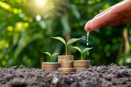 Farmer's hands are watering plants on stacked coins and naturally blurred background, SME financial growth, and investment concept.