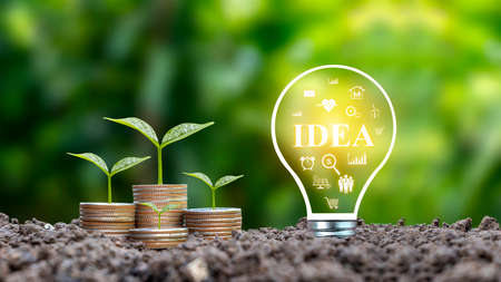 Trees grow from coins and energy-saving light bulbs labeled IDEA, growing finance ideas, and how to find business ideas that work for you.