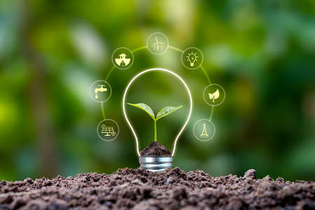 Tree growing on soil and environmentally friendly energy icons. earth day concept renewable energy to generate electricity Zdjęcie Seryjne