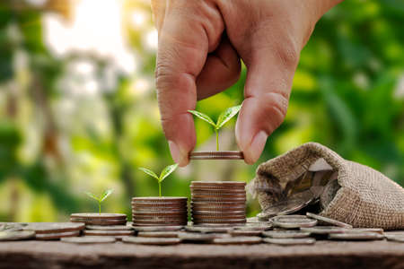 Tree growing piles of money in sequence, including woman's hand holding a coin with a tree on the coin, money saving and environmental investment ideas.
