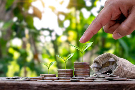 Planting a pile of money trees in sequence includes a woman's hand pointing to a tree on coins, savings and environmental investment ideas.