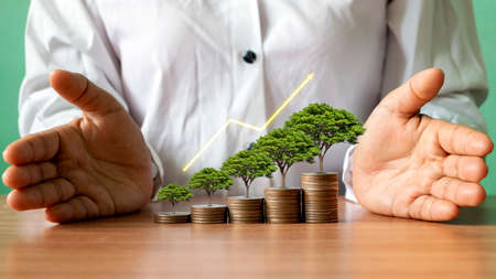 Tree growing on piles of money and graph showing business growth ideas to maximize profits from business investments.