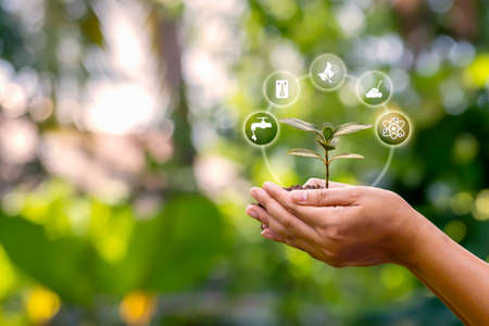 Sapling growing on soil in farmer's hands and plant growth factor icon, afforestation, and forest conservation concept.