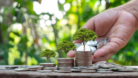 Plant trees on coins or money according to the concept of money growing and environmental investment.
