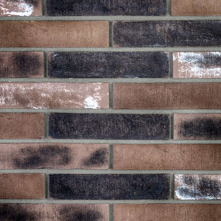 Brick wall texture. Background