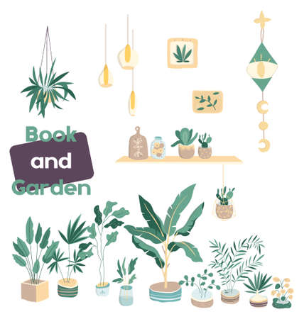House plants. Flowerpot isolated objects, houseplant flower pot collection. Home garden clip art illustration. Colorful design. For banner, invete, sale shop, web icon. Hand drawn card