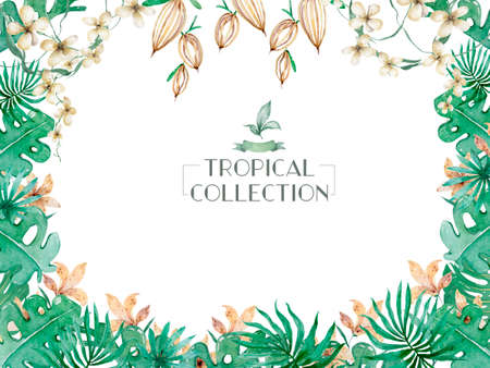 Hand drawn watercolor tropical set. Exotic leaves illustrations, jungle tree, brazil trendy. Perfect for fabric design. Aloha collection.