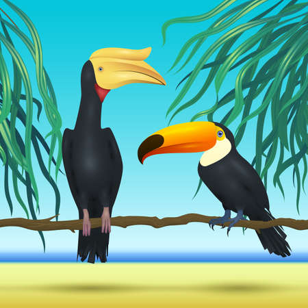 hornbill: realistic tropical birds on sunny background with sea, palm leaves and beach  Toko Toucan and Rhinoceros hornbill bird  vector illustration