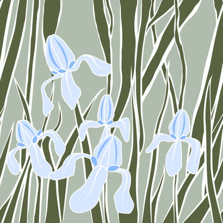 textile image: Vector. Graphic stylized image of irises.. Vector illustration with iris. Endless stylish texture. Template for design textile, backgrounds, wrappers, package Illustration
