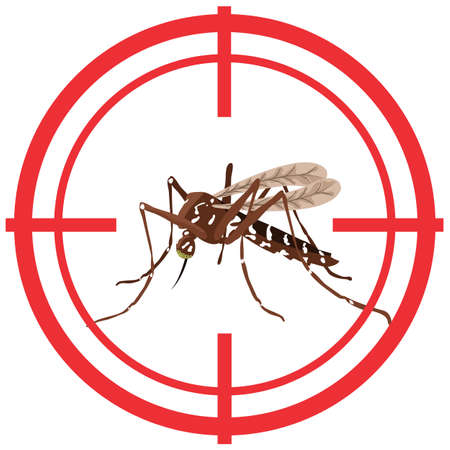 Nature, Aedes Aegypti mosquitoes with stilt target. sights signal. Ideal for informational warning