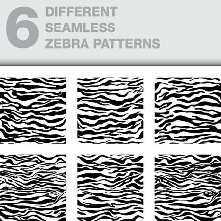 zebra pattern: Zebra pattern as a background, vector illustration Illustration