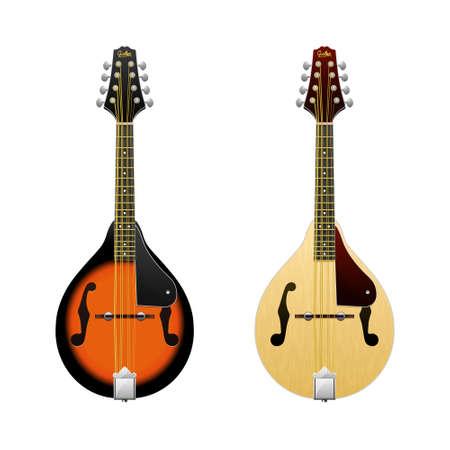 mandolin: Realistic vector Mandolin isolated on white mandolin Folk music instrument Mini-guitar Illustration