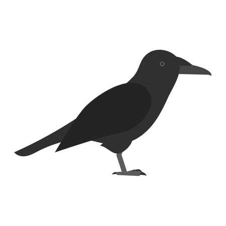 flat bird isolated on white background Illustration