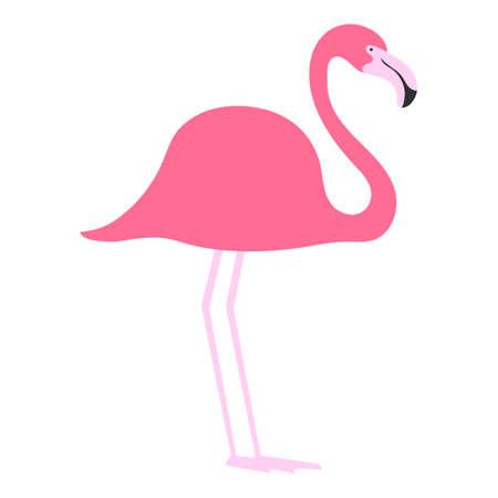 flat bird isolated on white background, beautiful illustration pink flamingo