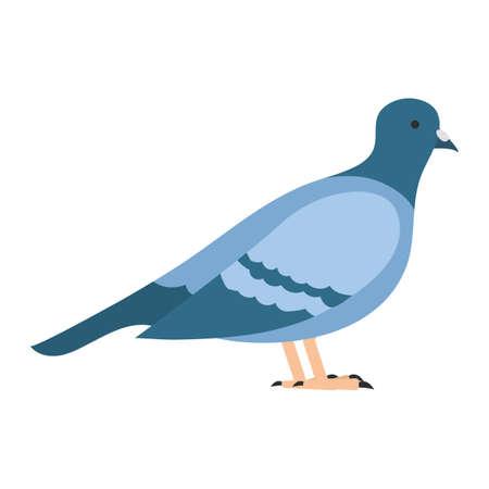 flat bird isolated on white background Illustration