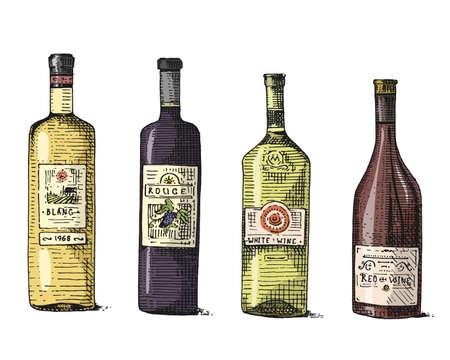 unopened: Wine bottle hand drawn engraved old looking vintage illustration Illustration