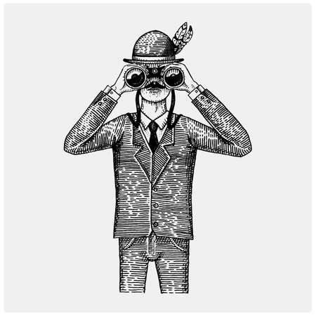 Uomo in costume guardando attraverso il binocolo, spyglass vintage vecchio inciso o illustrazione disegnata a mano. Cacciatore, ornitologo, scienziato in legno tagliato o in stile schizzo.