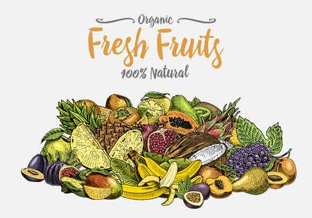 Vintage, hand drawn fresh fruits background, summer plants, vegetarian and organic citrus and other, engraved. pineapple, lemon, papaya, pitaya, maracuya and bananas. Illustration