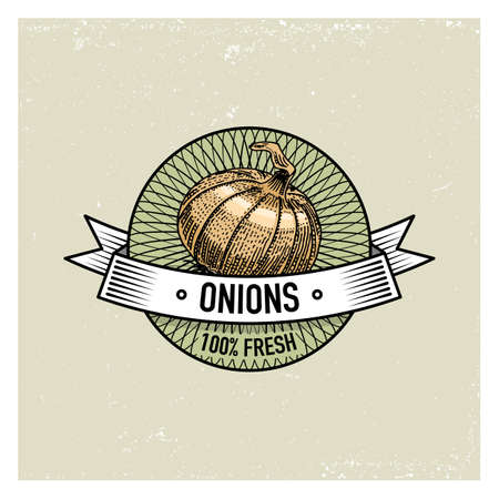 Onions Vintage set of labels, emblems or logo for vegeterian food, vegetables hand drawn or engraved. Retro farm american style
