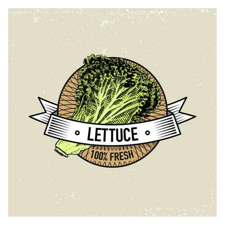 Salat Vintage-Satz von Etiketten, Embleme oder Logo für vegeterian Lebensmittel, Gemüse von Hand gezeichnet oder graviert. Retro Farm amerikanischen Stil