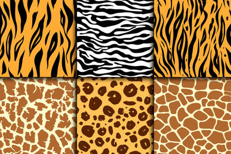Seamless pattern with cheetah skin. vector background. Colorful zebra and tiger, leopard and giraffe exotic animal print