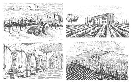 vineyards landscape, tuscany fields, old looking scratchboard or tattoo style for menus and signage in the bar.