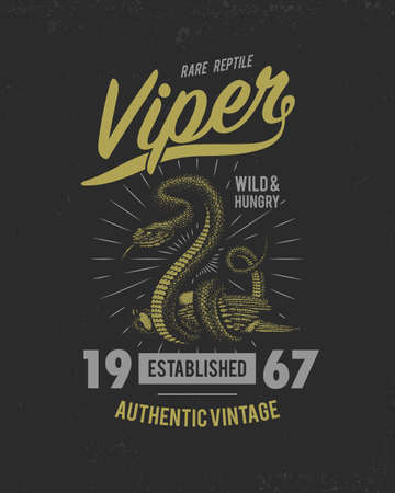 Viper snake. serpent cobra and python, anaconda or viper, royal. engraved hand drawn in old sketch, vintage style for sticker and tattoo. ophidian and asp. print for t-shirt.