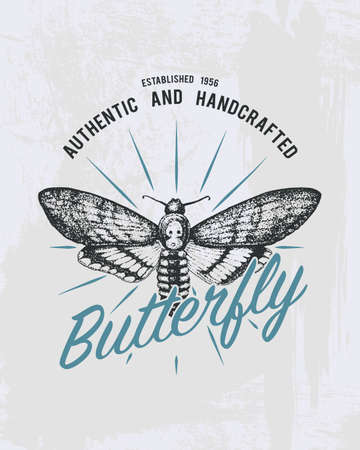 tee print butterfly, hawk moths or animal. t-shirt graphics design. Vector grunge background. vintage lettering and poster, print or banner. america typography. engraved hand drawn. insect with wings Illustration
