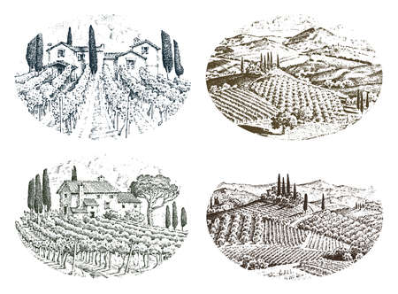 rustic vineyard. rural landscape with houses. solar tuscany background. fields and cypress trees. harvesting and haystacks. engraved hand drawn in old sketch and vintage style for label. Stock Illustratie
