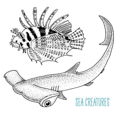sea creature red lion fish and great hammerhead shark. engraved hand drawn in old sketch, vintage style.