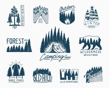 camping badges, mountains coniferous forest and wooden  . engraved hand drawn in old vintage sketch. emblem tent tourist, travel for labels. wild nature. landscapes with pine trees and hills.