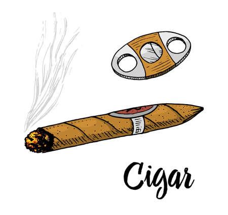 cigar or smoke, gentleman emblem. bad habit. classic cigarette. engraved hand drawn in old vintage sketch