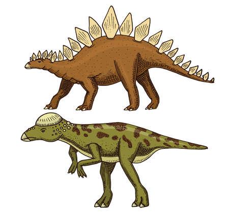 Dinosaur Stegosaurus, Pachycephalosaurus, Lexovisaurus, skeletons, fossils. Prehistoric reptiles, Animal engraved Hand drawn vector. Illustration