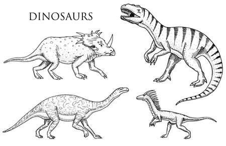 Dinosaurs Tyrannosaurus rex, Velociraptor, Ceratosaurus, Afrovenator, Megalosaurus, Tarbosaurus, Struthiomimus .  Prehistoric reptiles Animal engraved Hand drawn vector