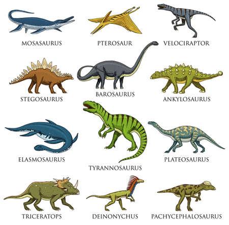 Dibujado a mano ilustración vectorial de diferentes especies de dinosaurios en el fondo blanco. Foto de archivo - 95397052
