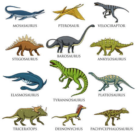 Hand drawn vector illustration of different species of dinosaurs on white background. 版權商用圖片 - 95397052