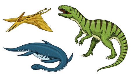 Dinosaurs Tyrannosaurus rex, Tarbosaurus, Struthiomimus . Prehistoric reptiles, Animal engraved Hand drawn vector