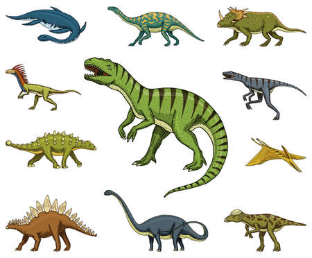Hand drawn vector illustration of different species of dinosaurs on white background.