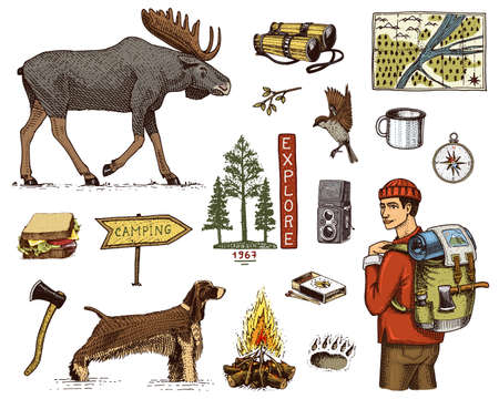 A camping equipment set, outdoor adventure, hiking. Traveling man with luggage.