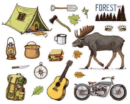 camping equipment set, outdoor adventure, hiking. Traveling man with luggage. tourism trip. engraved hand drawn in old sketch. moose and motorcycle, sandwich and binoculars, camera. backpack and tent