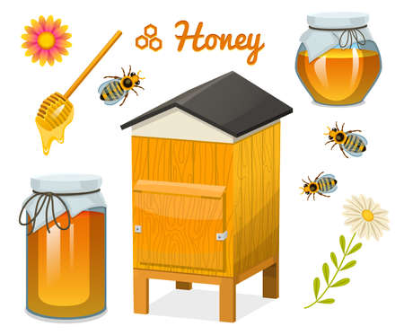 Honey set, bee and hive, spoon and honeycomb, hive and apiary. natural farm product. beekeeping or garden, flower chamomile. Health, organic sweets, medicine illustration, agriculture.