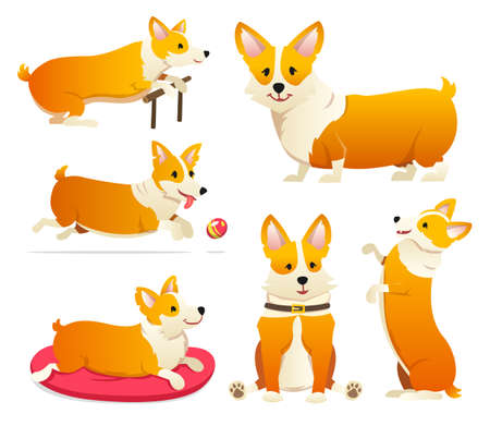 Set of cute dogs breed Welsh Corgi Pembroke on white background. A domestic pet, a happy royal animal for girls. Funny Red haired puppy looks like a fox. Vector illustration. Illustration