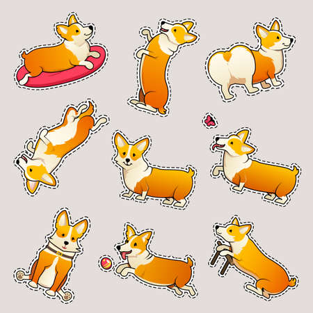 Set of cute dogs breed Welsh Corgi Pembroke on white background. stickers for girls. A domestic pet, a happy royal animal for girls. Funny Red haired puppy looks like a fox. Vector illustration. Standard-Bild - 103848360