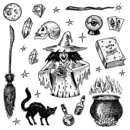 Halloween-elementen. Magische bal, heks met spreukenboek, vervloekte zwarte kat, beldam en tovenarij, heks of hex, toverdrank en ketel, schedel en waarzeggerij kaarten. Hand getrokken gegraveerde vintage schets.